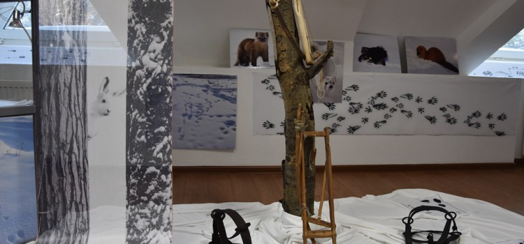 «Записки для охотника» в выставочных залах музея «Торум Маа»