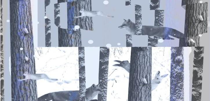Каслающая выставка «Записки для охотника. Путей след» в Нефтеюганске