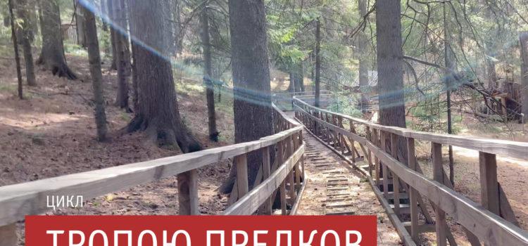Продолжаем следовать «Тропою предков»!