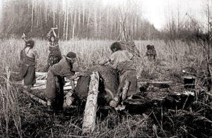 Заготовка дров и устройство печи для хлеба у хантов и манси всегда были обязанностью женщин. 1930 г.